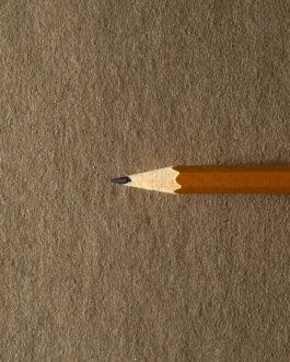 Eskiisiplokk  Brown 245×181 135g 28l.